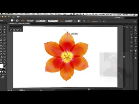Adobe Illustrator CS6 Crack  Serial Key is Here  Updated