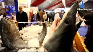 خيرات المغرب من الاسماك كما لم تروها من قبل تعرض باليوتيس
