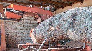 LT20 Sawmills cut rosewood timber in Zambia - Africa Wood-Mizer