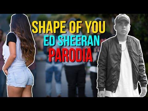 Xxx Mp4 Ed Sheeran Shape Of You Official Video PARODIA 3gp Sex