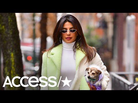 Xxx Mp4 Priyanka Chopra Returns To NYC After Marrying Nick Jonas 3gp Sex