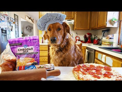 Funny Chef Dog Earl Cooks Pizza