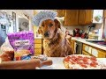 Funny Chef Dog Earl Cooks Pizza!