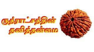 ருத்ராட்சத்தின் தனித்தன்மை - Sattaimuni Nathar - Siththarkal - Sithargal - Sithar