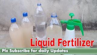 How to make Liquid Fertilizer at Home / तरल ऊर्वरक कैसे बनाये / Gardening Tips /Mammal Bonsai