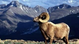 Gojal Hunza Valley ,Gilgit Baltistan ,Northern Area of Pakistan .
