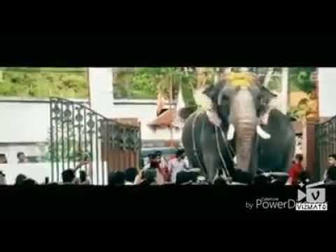 Xxx Mp4 Thrikkadavoor Sivaraju മന്നാടിയാർ 3gp Sex
