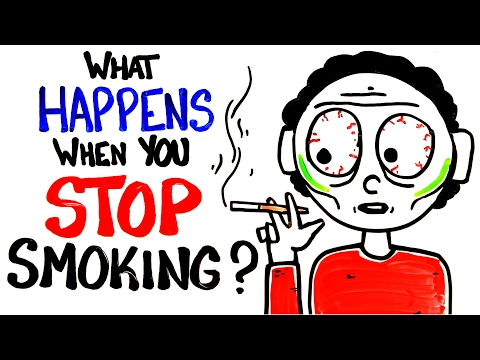 Xxx Mp4 What Happens When You Stop Smoking 3gp Sex
