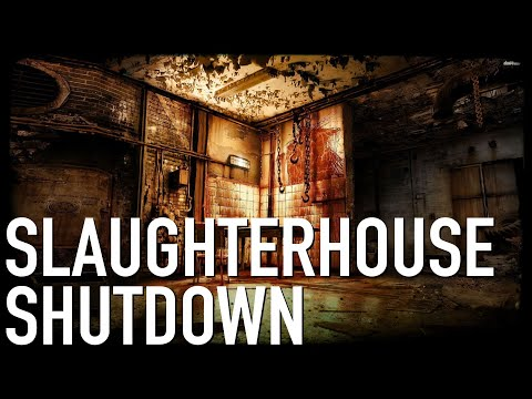 How To Shut Down A Slaughterhouse NOT Graphic