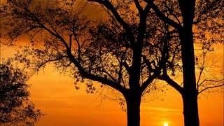 Vivaldi automne/fall full (11)