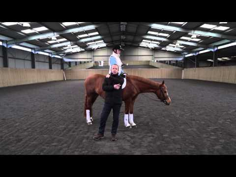 Lesson 3 Rising Trot Posting Trot