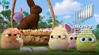 The Angry Birds Movie - Happy Easter from the Hatchlings - At Cinemas May 13