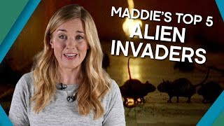 Maddie's Top 5 Alien Invaders - Earth Unplugged