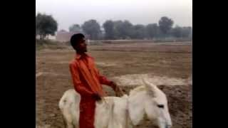 Sariki Funny Drama Part-3(Chandak Khoti Chor )