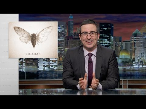 Last Week Tonight with John Oliver Cicadas Web Exclusive
