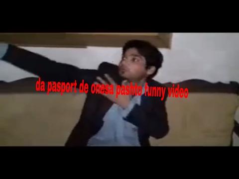da pasport de onesa pashto funny video