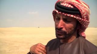 Falcon Racing Dubai