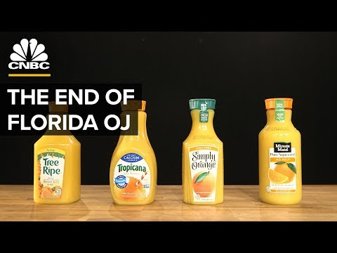 Xxx Mp4 Why Most Orange Juice Comes From Brazil Not Florida 3gp Sex