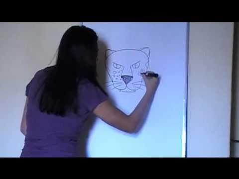 ensinando a desenhar onça pintada cabeça .wmv