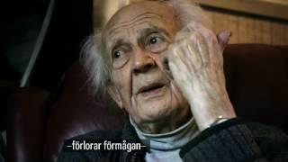 The Swedish Theory of Love - Zygmunt Bauman