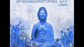 Buddha-Bar XI by Ravin//Dave Seaman - Gobbledygook (Funkagenda's Repulse Remix)