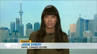 CTV Liberal Task Force on the Legalization of Marijuana with Jodie Emery