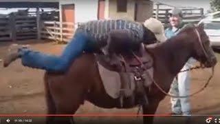 Caidas a Caballo || Videos de Risa 2016 Mas Chistosos Para Whatsapp 73