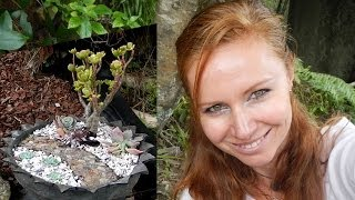 How to make a flower pot from tire and make a miniature fairytale garden