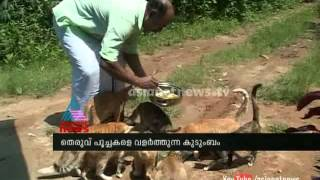 Cat lovers in Wayanad : Asianet News Special