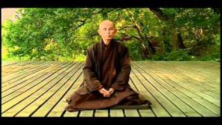 Thich Nhat Hanh about Freedom