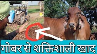 गोबर को शक्तिशाली खाद सिर्फ 40 दिन में| how to make compost with waste decomposer by ncof in hindi