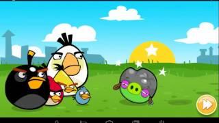 ANGRI BIRD #3