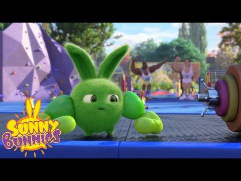 Xxx Mp4 Cartoons For Children SUNNY BUNNIES WHO S STRONGER New Episode Season 3 3gp Sex