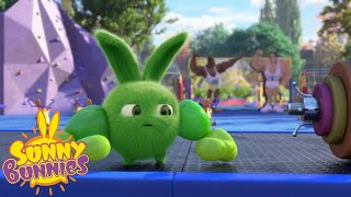 Cartoons For Children | SUNNY BUNNIES - WHO