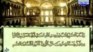 القرآن الكريم كاملا - ختمة الأجزاء - محمد أيوب