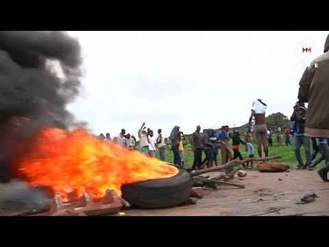 Zim protests What has happened so far