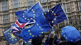 Brexit: Institute of Directors wants more clarity over customs union