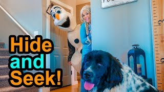 Elsa Plays Hide and Seek with Olaf and Ducky the Puppy