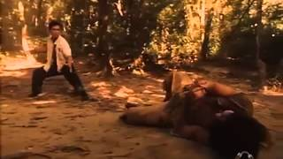 Donnie Yen Vs Mak Wai Cheung Legend of the Wolf) Better quality