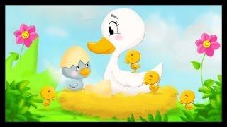 Histoire pour enfants : Le vilain petit canard