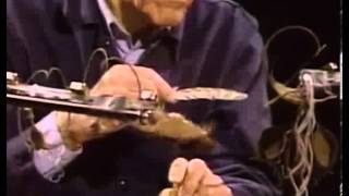 John Cage playing amplified cacti and plant materials with a feather SD MPEG