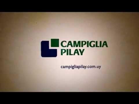 Xxx Mp4 Campiglia Pilay 3gp Sex