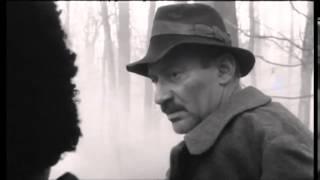 Promo Film | MOROMEȚII  THE MOROMETE FAMILY | CINEPUB