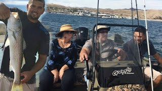 My Family Slaying Fish: The Stripers and Smallmouth Bass Were Biting at Cottonwood Cove Lake Mojave