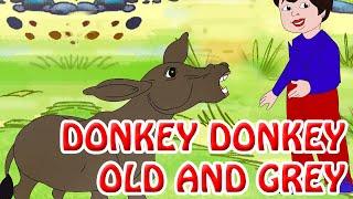 Donkey Donkey Old And Grey | Nursery English Rhymes