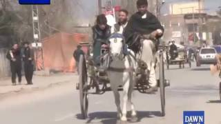 Traditional Transport Tanga in Peshawer