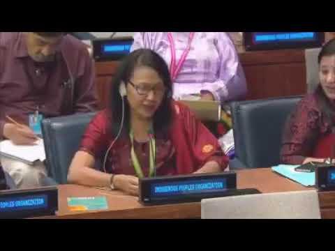 Xxx Mp4 Dr Anjali Daimari At UN Headquarter For Bodo Cause 3gp Sex