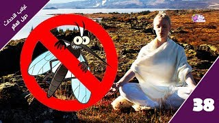 أيسلندا دولة بلا بعوض فكيف حدث ذلك ؟!  | غرائب الاحداث حول العالم - حلقة 38