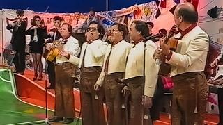 Los Romeros de la Puebla. Amapola