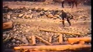 Holztrift im Lesachtal in der Gail im Jahr 1967
